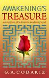 Awakening's Treasure